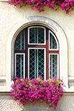 Det gammala fönstret specificerar Royaltyfri Foto