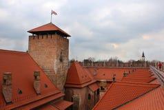 Det gotiska slottet av Gyula - taklägga beskådar Arkivbild
