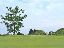 Det gröna fältet med blå himmel på Nara parkerar, Japan fotografering för bildbyråer