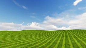 Det gröna fältet och molnig himmel 3D framför lager videofilmer