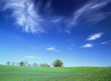 Det gröna fältet, vit fördunklar i den blåa himlen n Royaltyfri Fotografi
