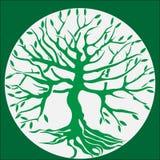 Det gröna trädet med rotar royaltyfri illustrationer
