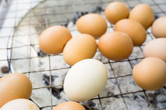 Det grillade ägget/ägg på grillfesten grillar i gatamarknad Arkivbilder