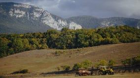 Det gula drevet på fält near mest forrest med berg på bakgrund Royaltyfria Foton