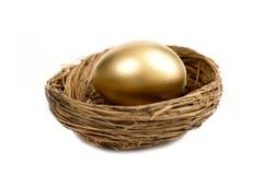 Det guld- ägget som in lägger, bygga bo Royaltyfri Bild