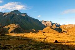 Det guld- landskapet av sydliga fjällängar på aftonljuset, medan inställningssolen, berg och kullar av Routeburn spårar utmärkt,  royaltyfria foton