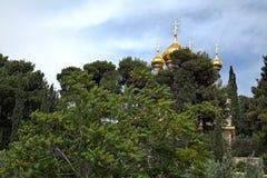 Kyrka av Maria Magdalene bland Trees Arkivfoto
