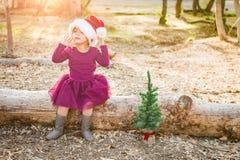 Det gulliga barnet för blandat lopp behandla som ett barn flickan som har gyckel med Santa Hat och julgranen royaltyfri fotografi