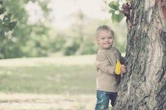 Det gulliga härliga barnet som har gyckel i varm höstdag parkerar in Arkivfoton