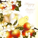 Påskhälsningskortet med ägg, äpplen, fjädrar blommor och fågelungen Royaltyfri Fotografi