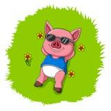 Det gulliga svinet vilar på gräset vektor illustrationer