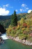 Det härliga berget vid floden Royaltyfria Bilder