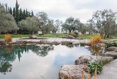 Det härliga dammet med blått vatten i ett exotiskt parkerar Arkivfoto