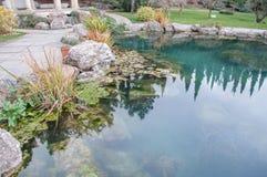 Det härliga dammet med blått vatten i ett exotiskt parkerar Arkivbilder