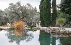 Det härliga dammet med blått vatten i ett exotiskt parkerar Arkivfoton