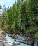 Det härliga höga berget Green River i Nairn faller provinsiellt parkerar British Columbia Kanada Royaltyfri Bild