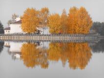 Det härliga höstlandskapet av träd reflekterade i vatten Royaltyfri Foto