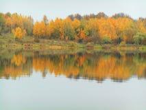 Det härliga höstlandskapet av träd reflekterade i vatten Arkivfoton