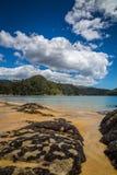 Det härliga havlandskapet med vaggar dolt i skal av svarta blötdjur Royaltyfria Bilder