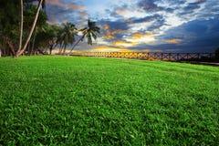 Det härliga landskapet av fältet för grönt gräs parkerar mot dunkel himmel Arkivbilder
