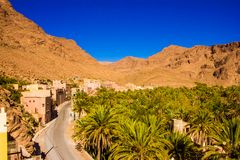 Det härliga landskapet av gömma i handflatan oasen nästan Tinghir, Marocko, Afrika royaltyfria bilder
