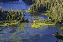 Det härliga landskapet av Twin Falls förbiser Royaltyfri Bild