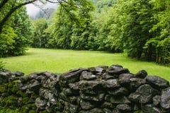 Det härliga landskapet Schweiz för valle maggianatur royaltyfri foto