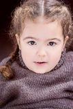 Det härliga lilla missflickalilla barnet med fransman flätar blont hår Fotografering för Bildbyråer