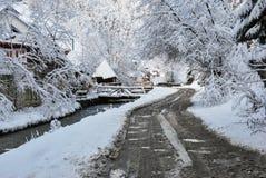 Det härliga vinterberg landskap De rumänska Carpathiansna Arkivfoto