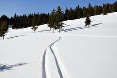 Det härliga vinterlandskapet med skidar spår i snön Arkivbilder