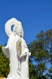 Det härligt av Guan yin Royaltyfri Fotografi