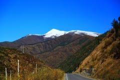 Det höstliga landskapet av den Qinghai - Tibet platån Arkivbilder