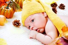 det höstliga spädbarn låter vara pumpor Arkivfoto