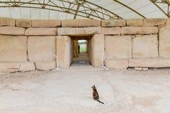 Det Hagar Qim tempelkomplexet grundar på ön av Malta Royaltyfri Fotografi