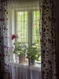 Det hem- fönstret blommar dekoren Arkivbild