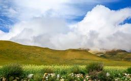 Det Himalayan dallandskapet Arkivbilder