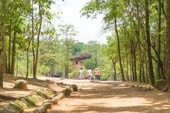 Det historiska Phu Phra slagträet parkerar royaltyfria bilder