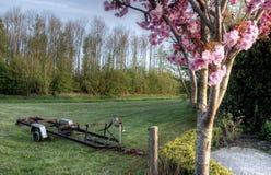 Det holländska lantliga landskapet på en solig dag kan in Arkivfoton