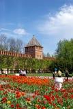 Kremlin av Smolensk Fotografering för Bildbyråer