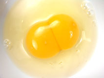 det identiska ägget kopplar samman vit yolk Royaltyfria Bilder