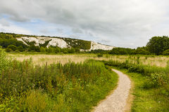 Det järnväg landdjurlivförtroendet och Cliffe kullen i avståndet Royaltyfri Foto