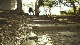 Det japanska folket som går upp på trappan i Ueno, parkerar på Tokyo, Japan stock video