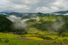 Det japanska lantliga landskapet med ris terrasserar i bergskog Royaltyfri Fotografi