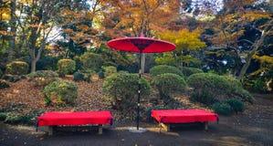 Det japanska r?da paraplyet p? staden parkerar royaltyfri foto
