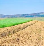 det jordbruks- bruna fältet smutsar Royaltyfria Bilder