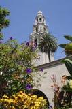 Det Kalifornien tornet i Balboa parkerar beskådat från Alcazarträdgårdarna Arkivbild