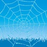 Det kan vara nödvändigt för kapacitet av designarbete Cobweb vektor illustrationer