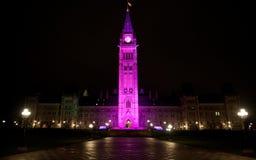 Det kanadensiska fredtornet firar dagen av flickan Royaltyfria Foton