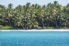 Det karibiska havet med turkosvatten och gömma i handflatan nästan den Saona ön Arkivfoto