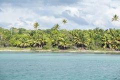Det karibiska havet med turkosvatten och gömma i handflatan nästan den Saona ön Arkivfoton